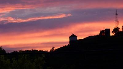Nachtaktiv nach Hoheneck